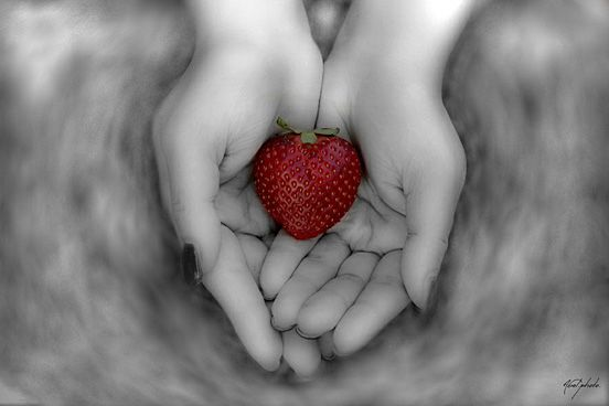 The Love is a Fruit of The Forest