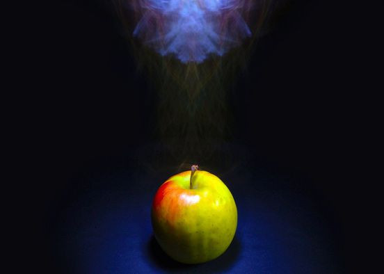 Apple Smoking In The Darkness