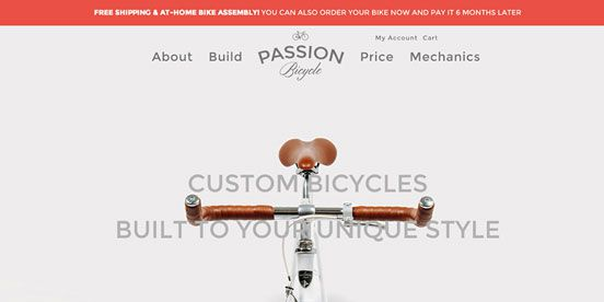 PASSION BICYCLE